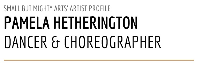 meet the artists - profile title image (Pam Hetherington)